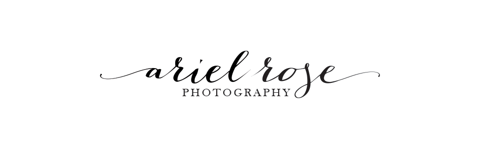 Ariel Rose Photography logo